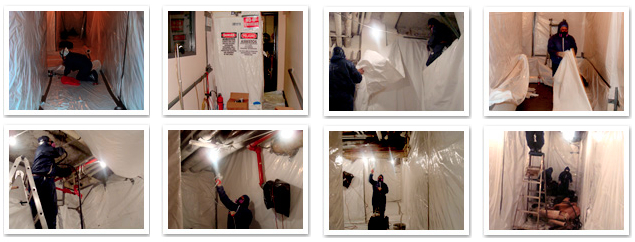 American-Vets Abatement Experts are careful with asbestos removal